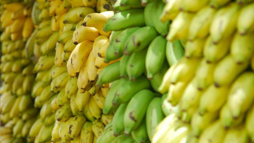 鉀-食物來源-香蕉