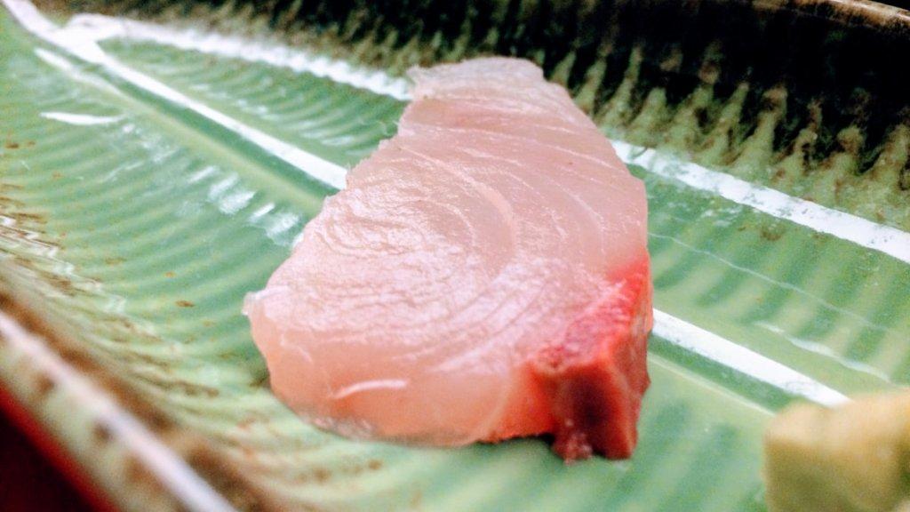 白旗魚-海底雞-black-marlin