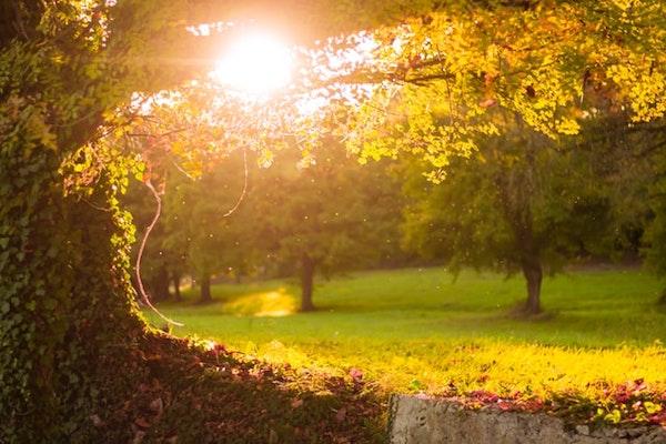 2021-農曆新年-春節-健康生活-自然環境