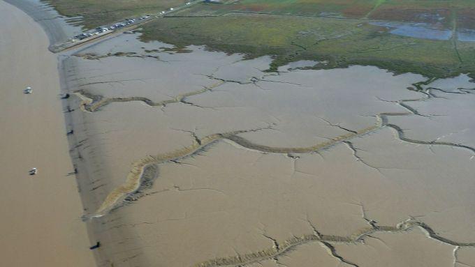 La vasière de la baie de l'Aiguillon - Programme LIFE baie de l'Aiguillon