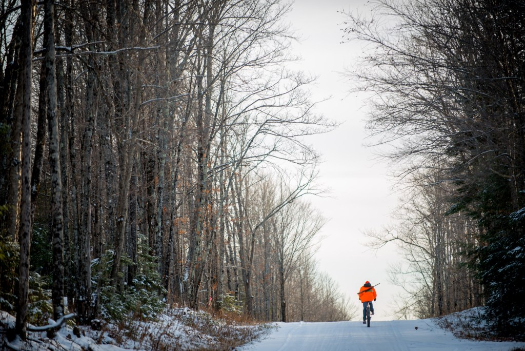 Man in blaze orange with rifle on back rides a bike away from camera down a snowy road in the forest