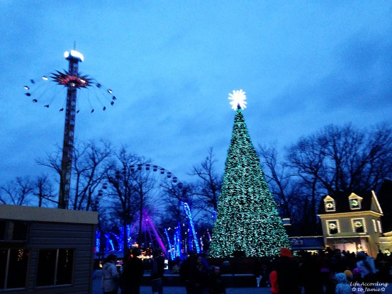 Six Flags - Holiday in the Park 5