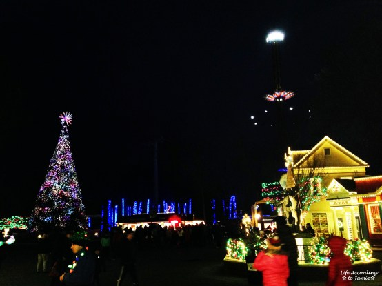 Six Flags - Holiday in the Park 6