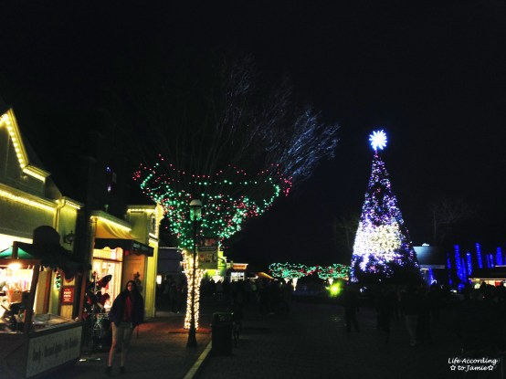 Six Flags - Holiday in the Park 7