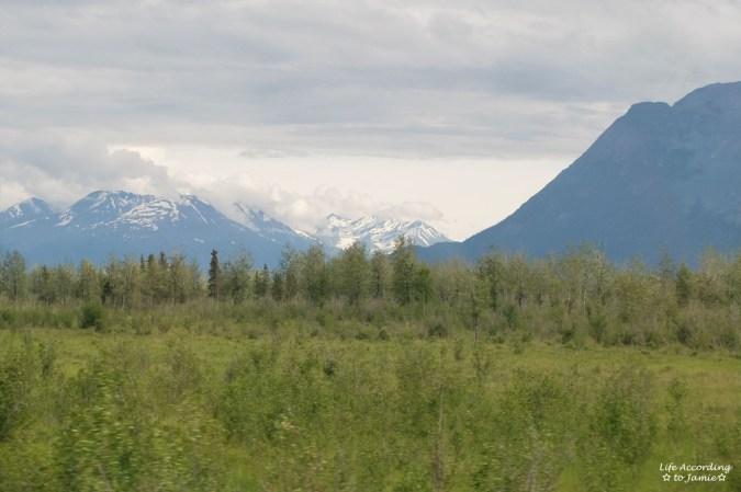 Alaska Rail View