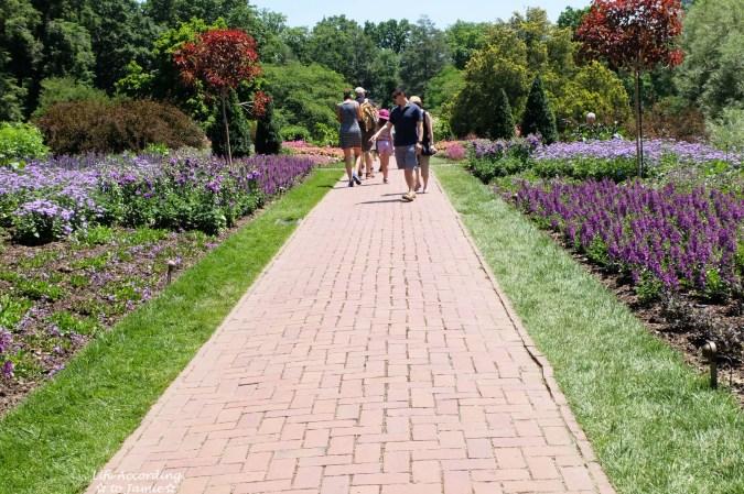 Longwood Gardens - Flower Path