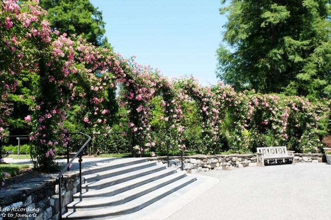 Longwood Gardens - Rose Arbor