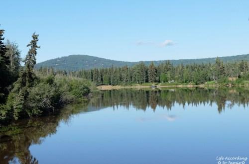 chena-river