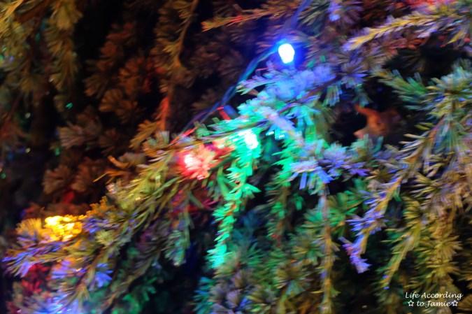 outdoor-christmas-lights-1