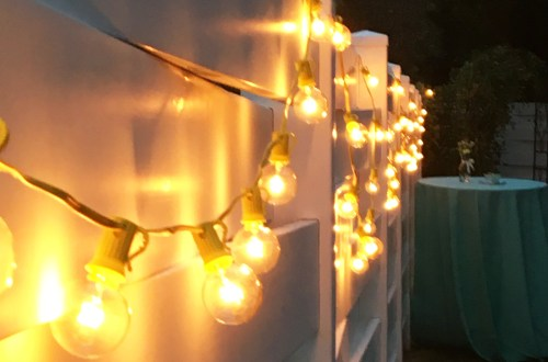 lights-on-fence