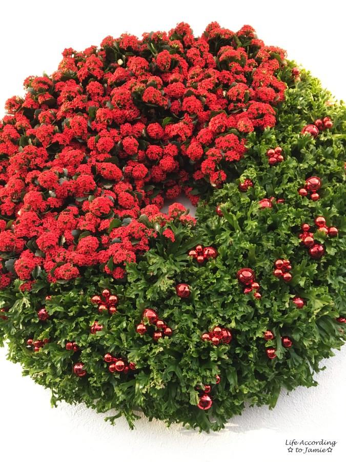 longwood-gardens-living-wreath