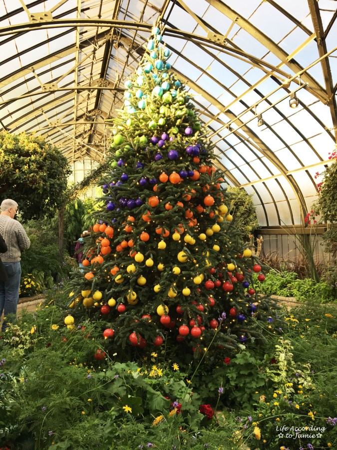longwood-gardens-rainbow-christmas-tree