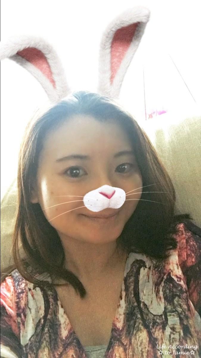Instastory Bunny Filter