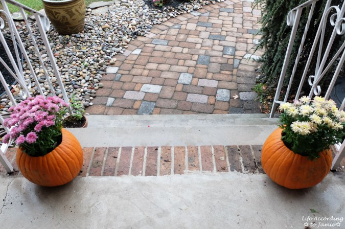 Pumpkin Planter + Mums 7