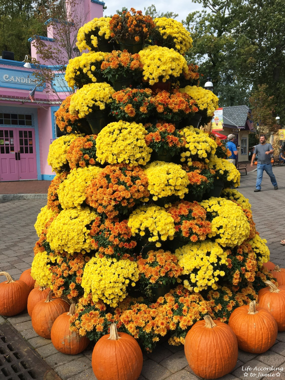 Six Flags Great Adventure - Halloween Decorations