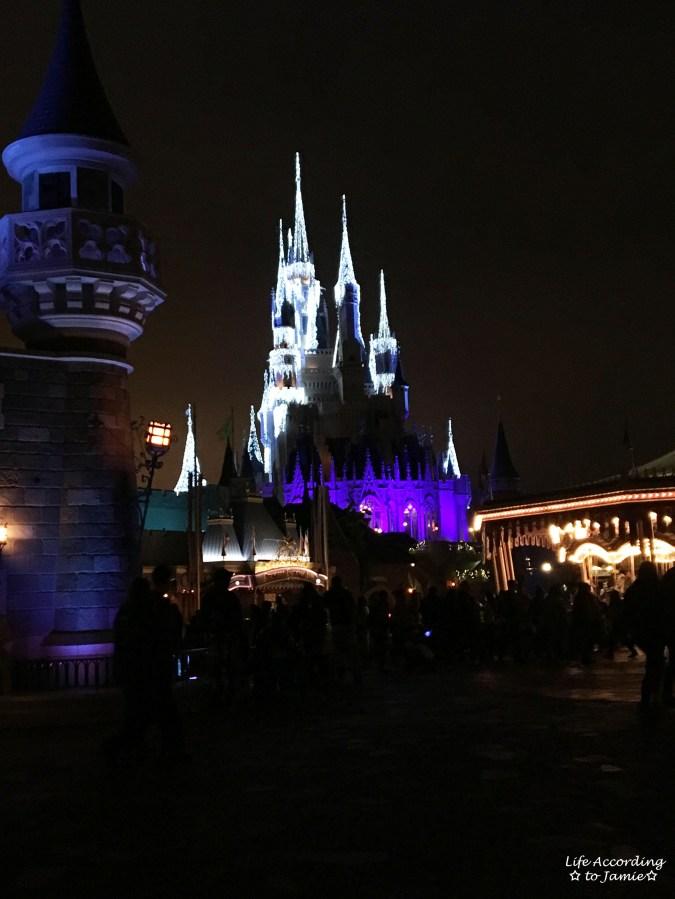 Cinderella Castle - night