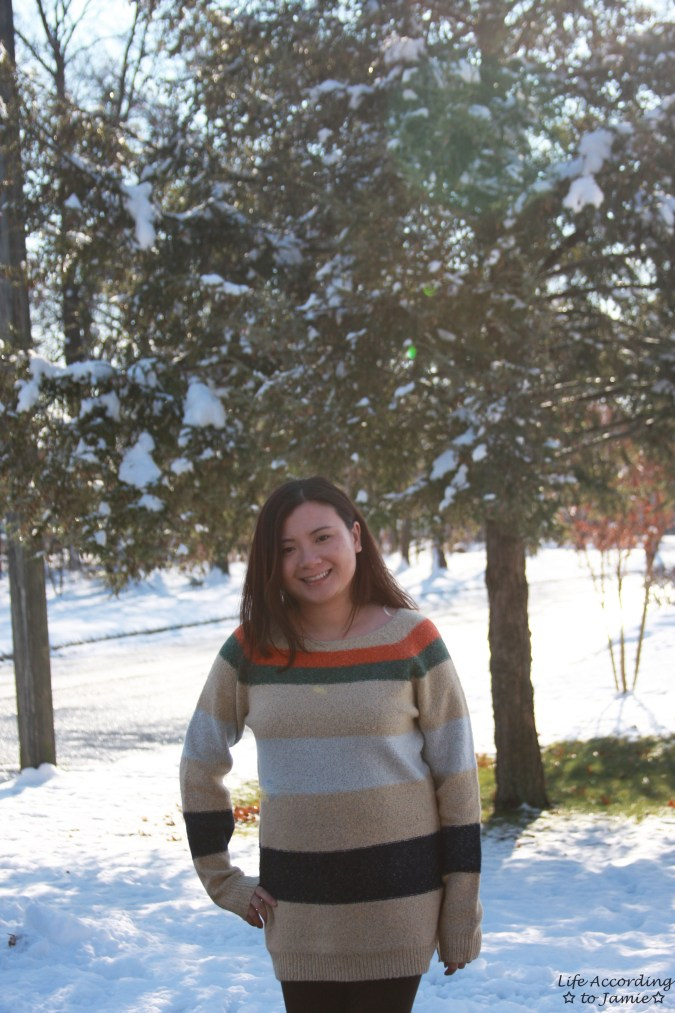 Block Stripe Sweater 6