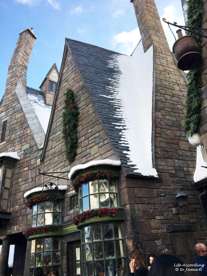 Universal Studios Orlando - Wizarding World of Harry Potter - Hogsmeade 7