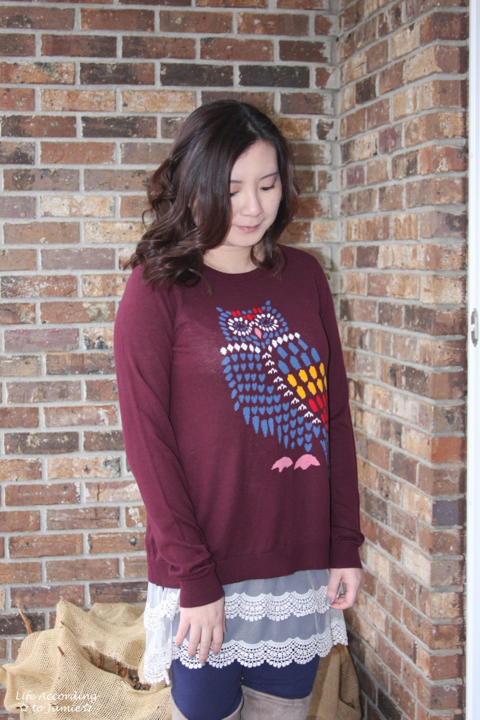 Owl Sweater + Lace Extender 11