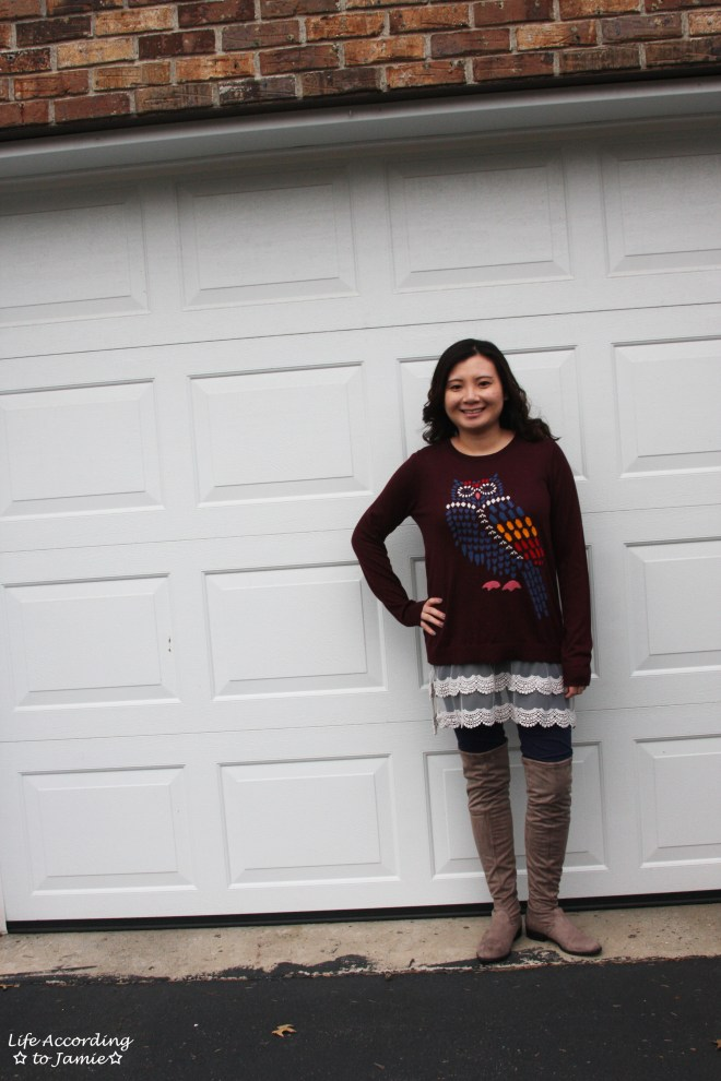 Owl Sweater + Lace Extender 3