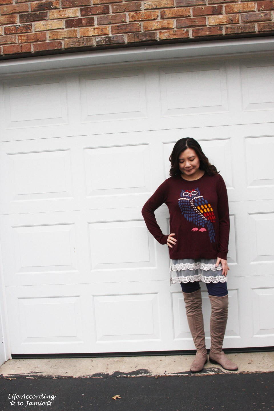 Owl Sweater + Lace Extender 4
