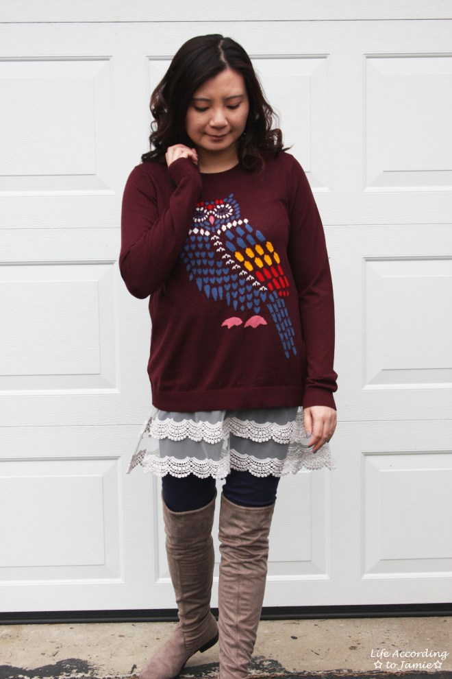 Owl Sweater + Lace Extender 6