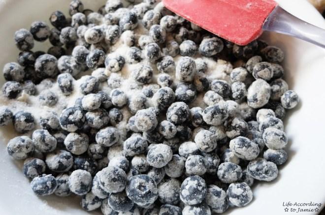 Blueberries + Sugar 1
