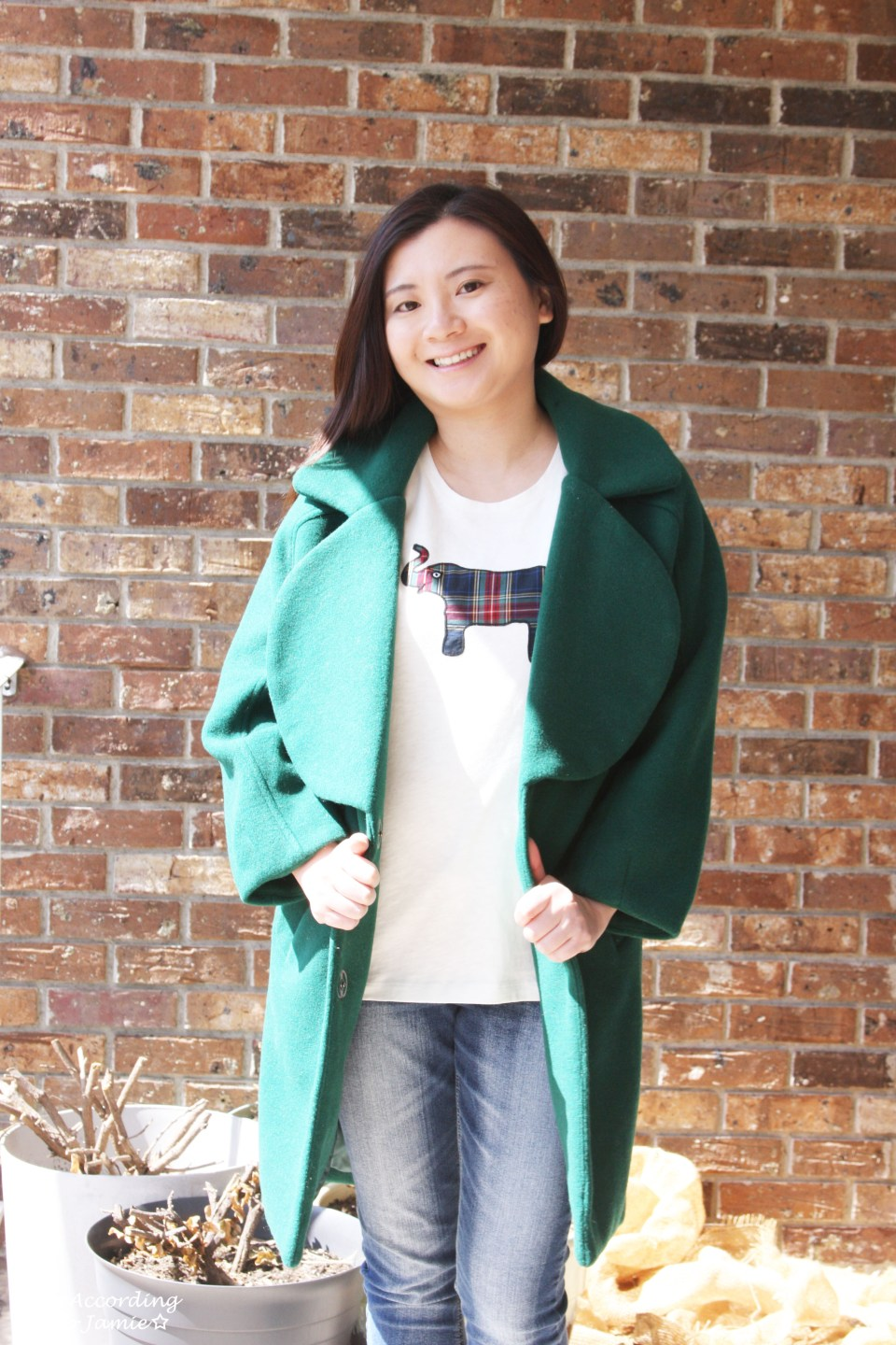 Green Lapel Coat + Plaid Elephant Tee 9