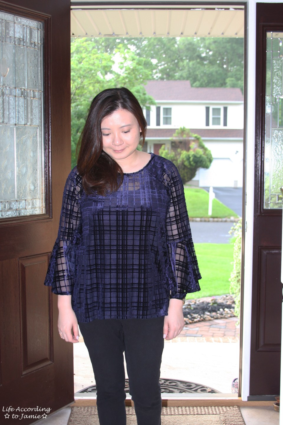 Blue Velvet Plaid Blouse 5