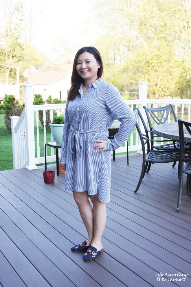 Pinstripe Shirt Dress 10