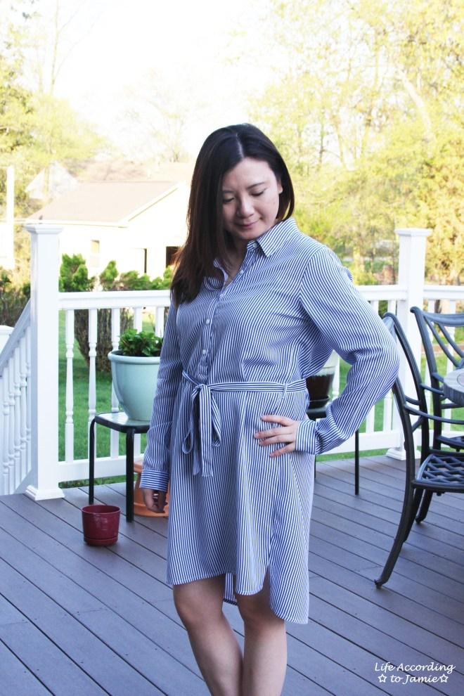 Pinstripe Shirt Dress 11