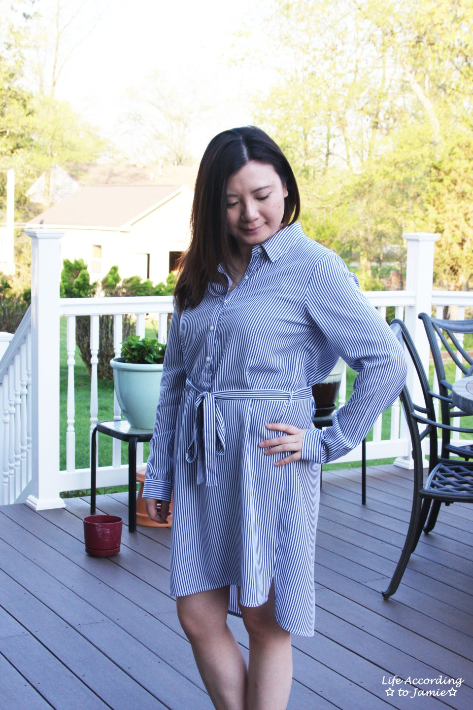Pinstripe Shirt Dress 11