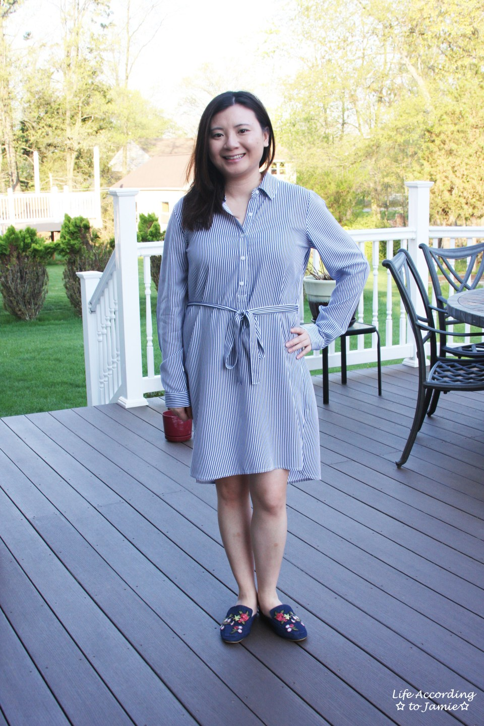 Pinstripe Shirt Dress 12