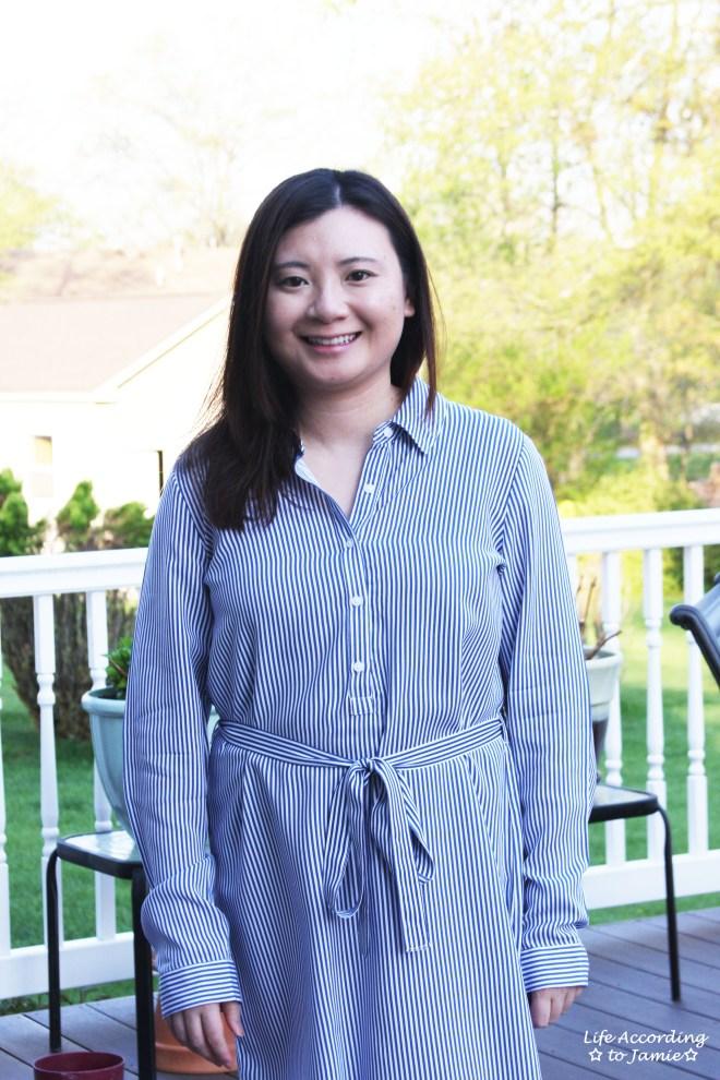 Pinstripe Shirt Dress 6