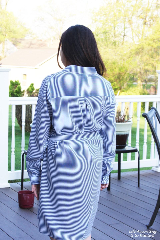 Pinstripe Shirt Dress 9