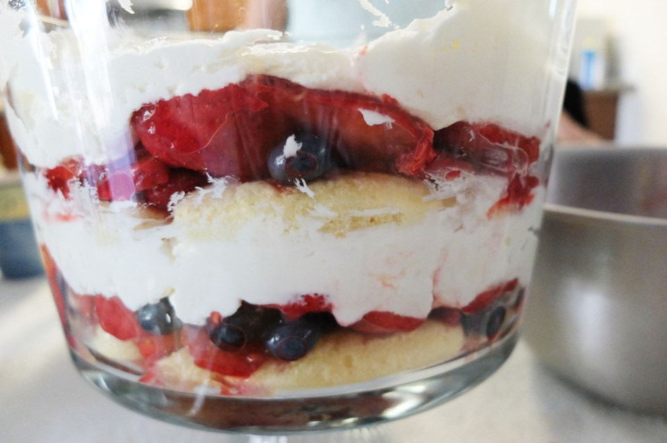 Berry Trifle 5