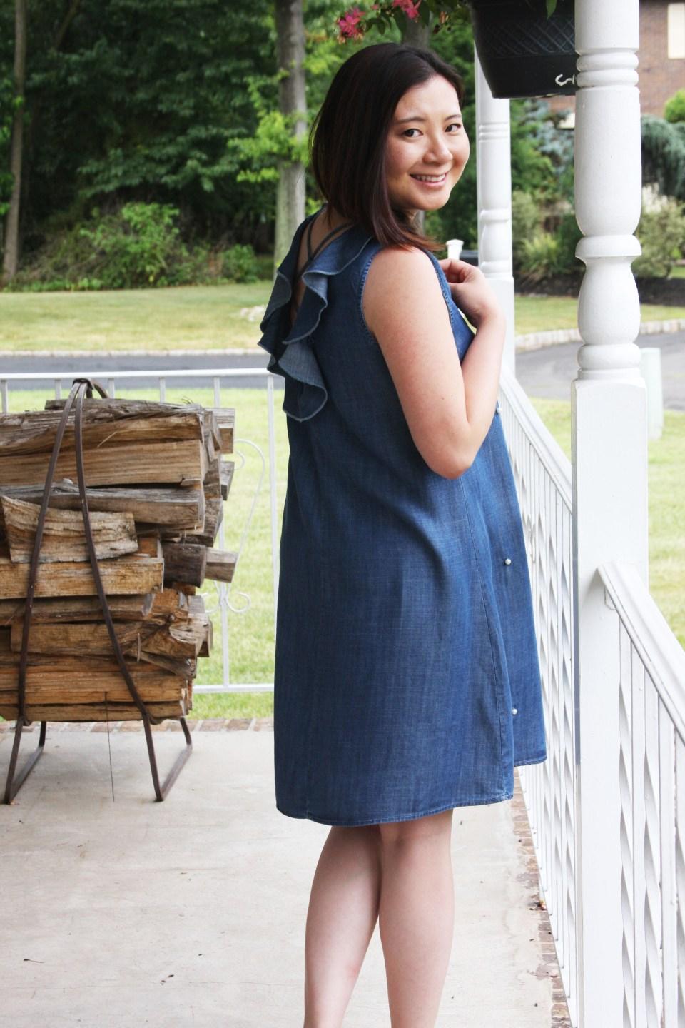 Pearl Embellished Chambray Dress 4