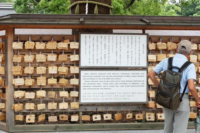 Meiji Shrine 10