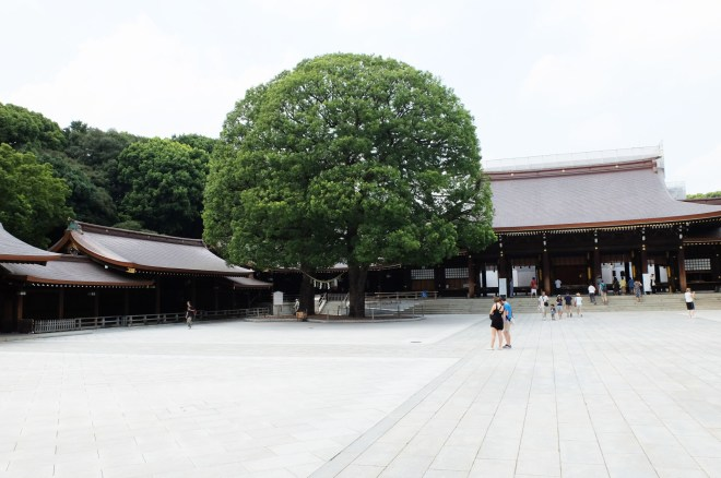 Meiji Shrine 8