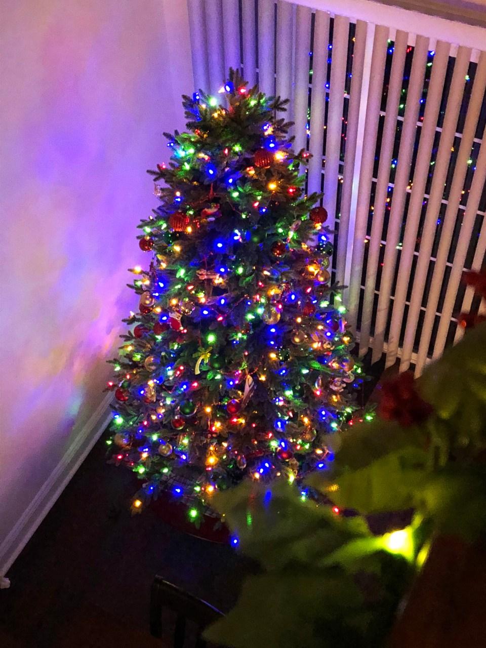 Christmas Tree - Nighttime 5