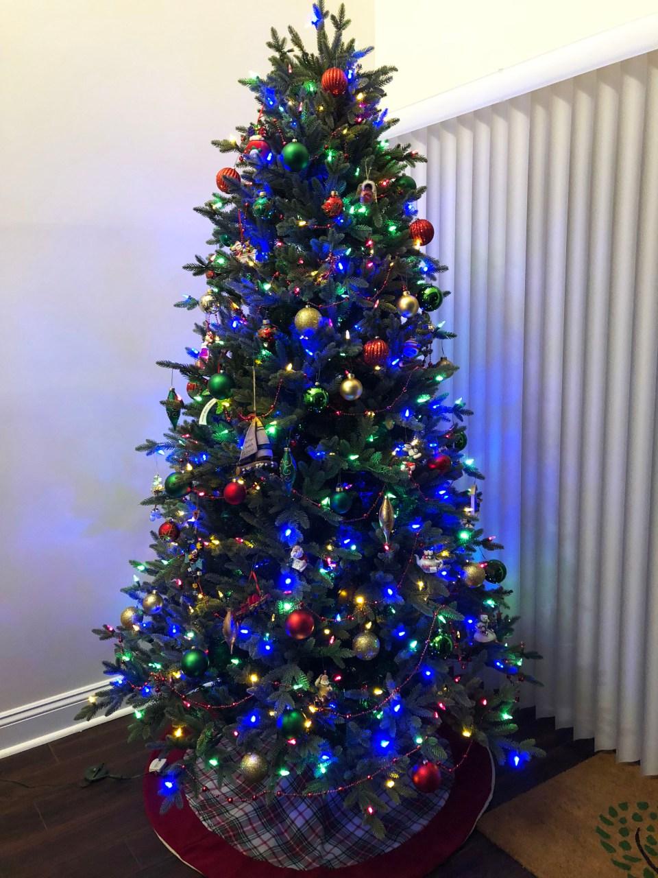 Christmas Tree - Nighttime 6