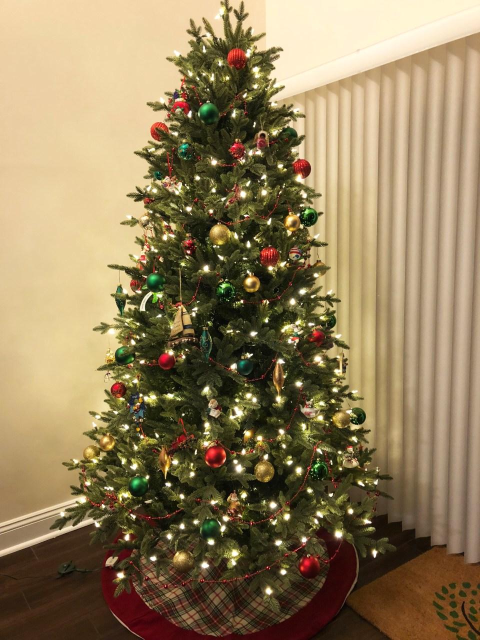 Christmas Tree - Nighttime 7