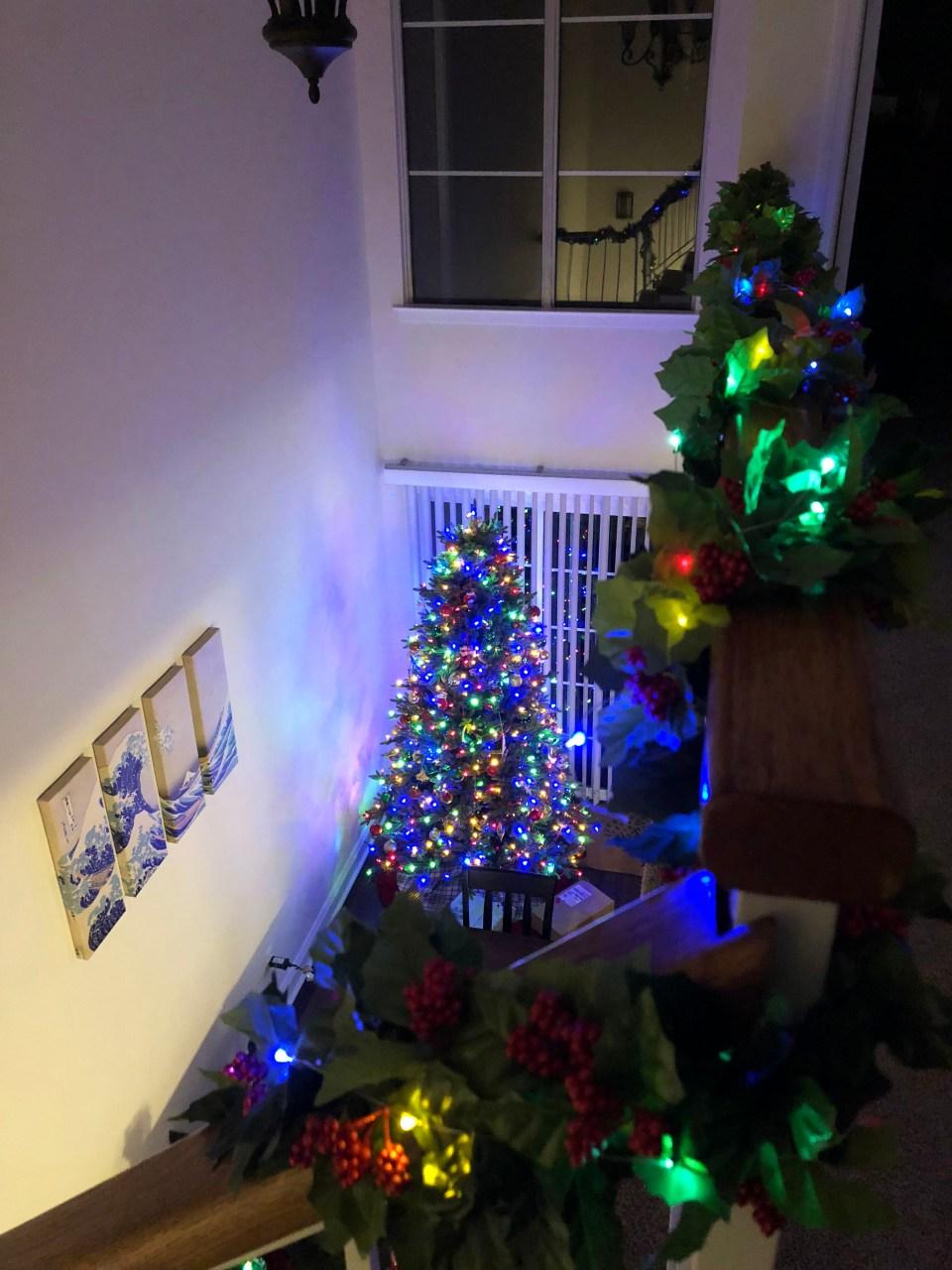 Christmas Garland + Lights 10