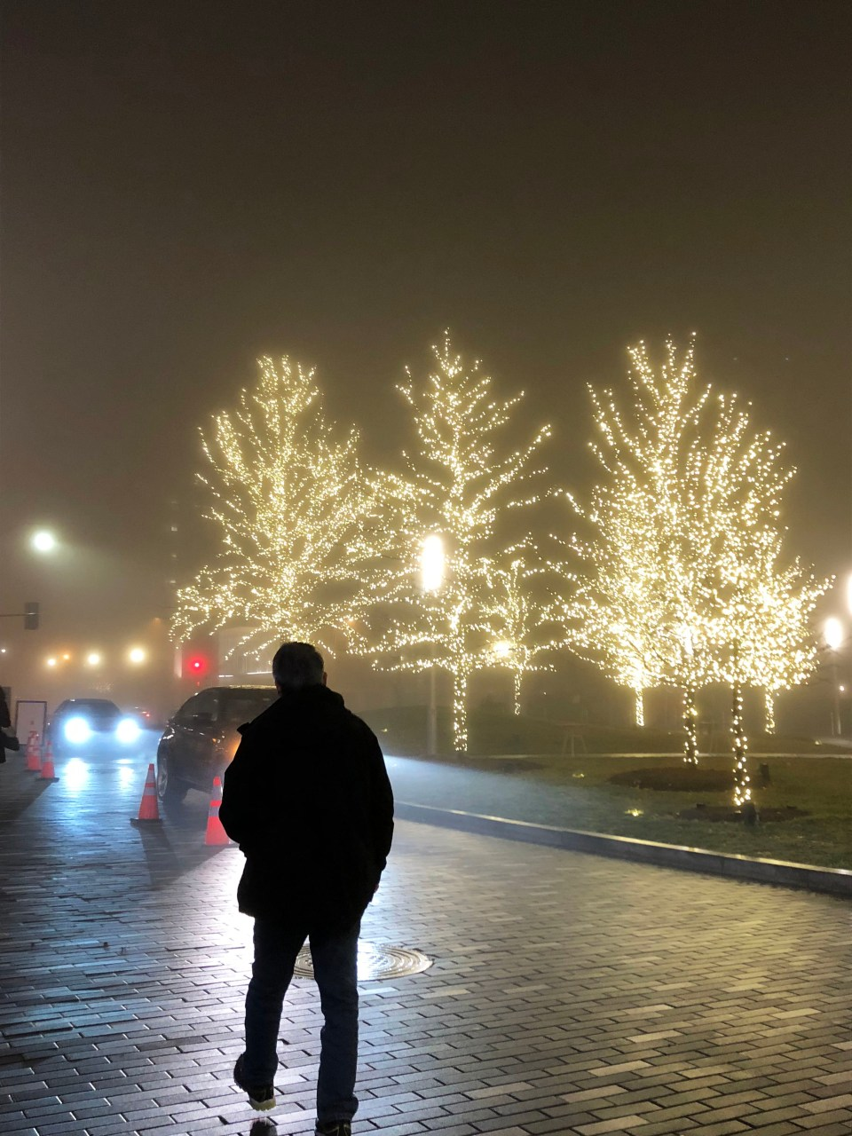 Foggy Washington DC