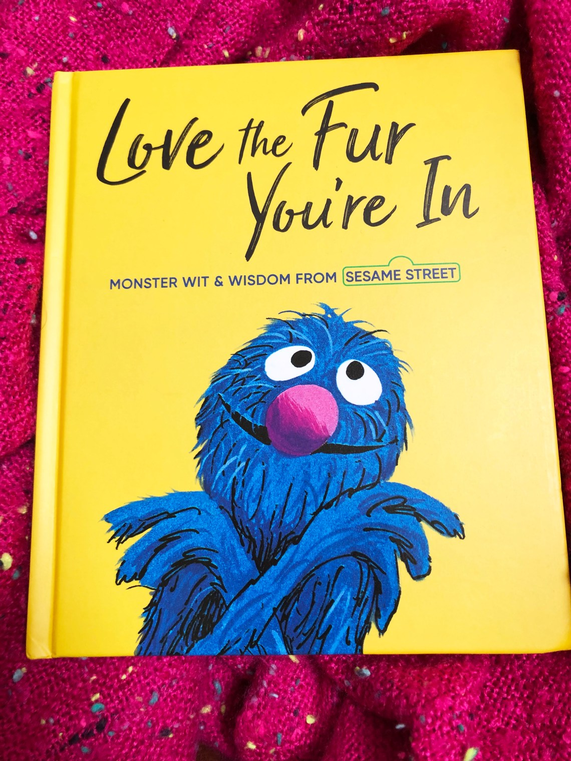Sesame Street - Love the Fur You're In