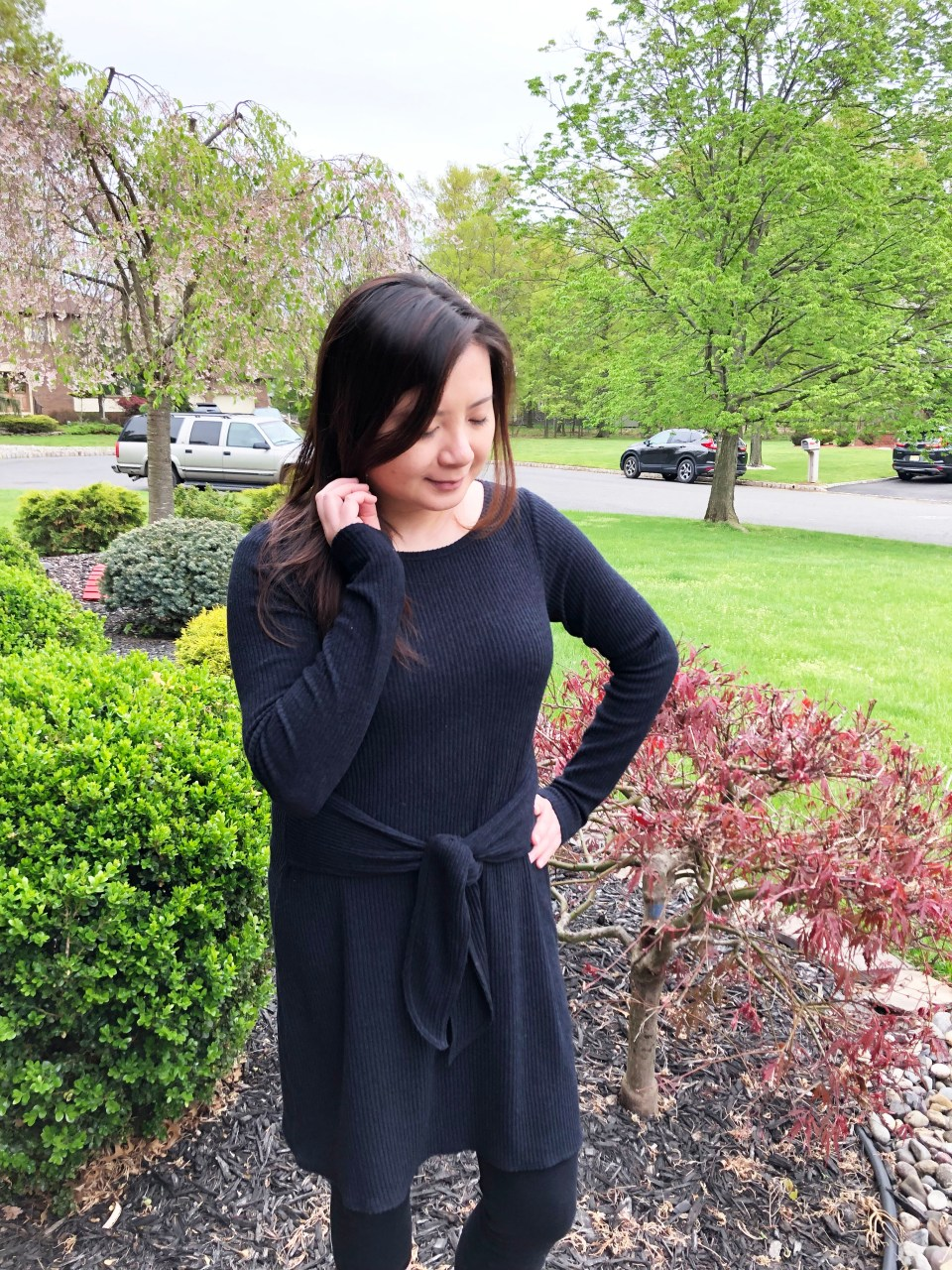 Tie Front Sweater Dress 6