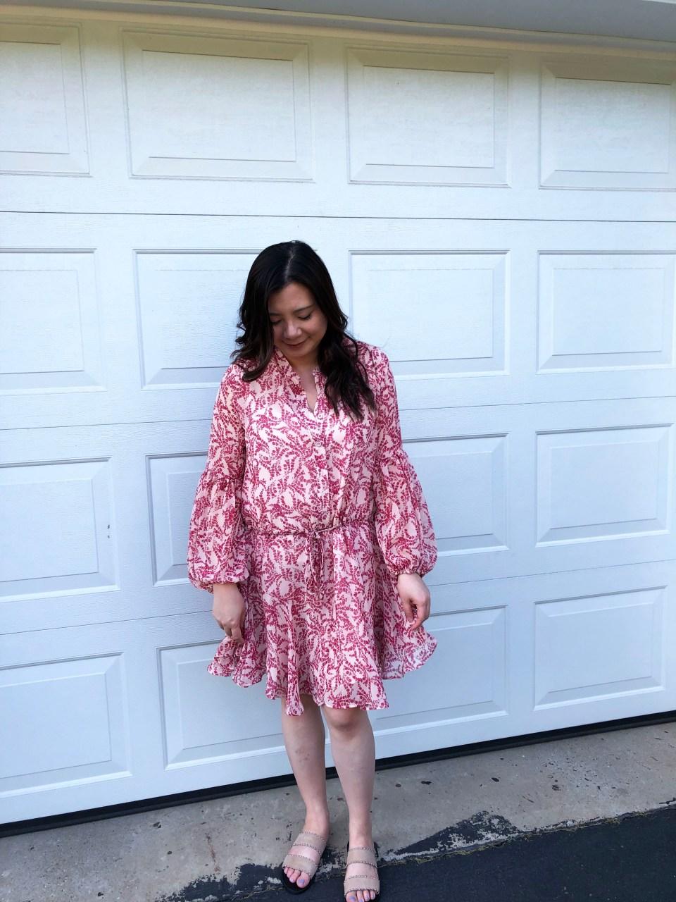 Grapevine Balloon Sleeve Dress 3