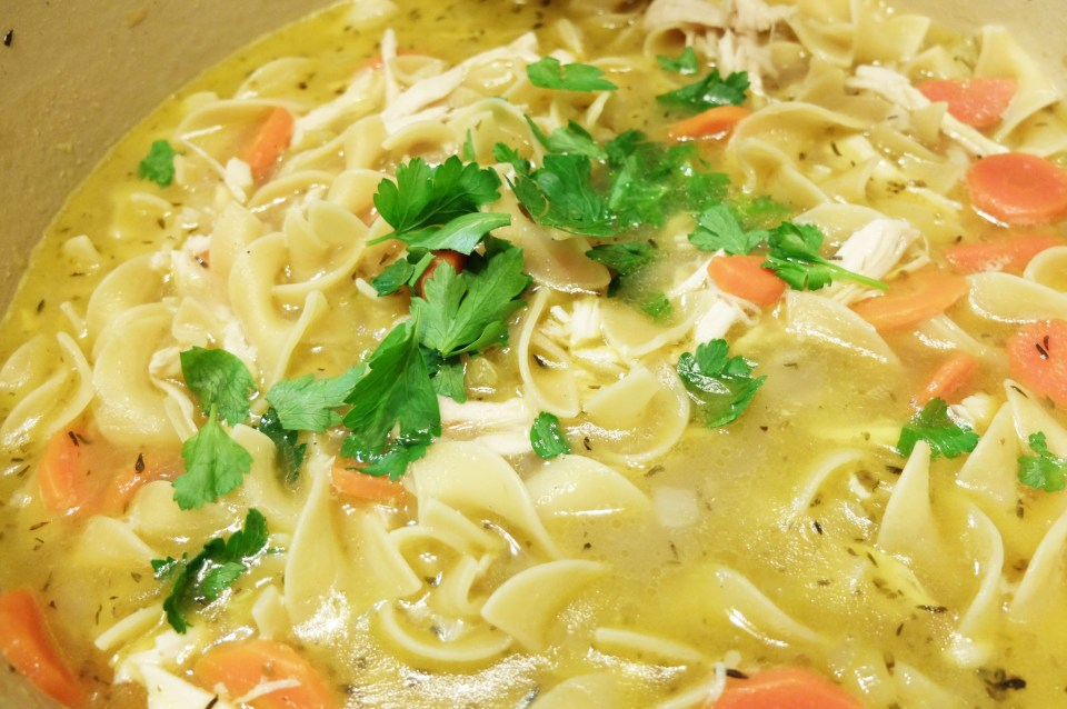 Chicken Noodle Soup 8