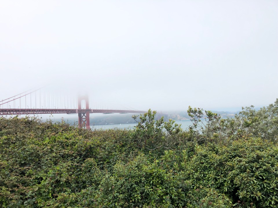 Golden Gate Bridge 11