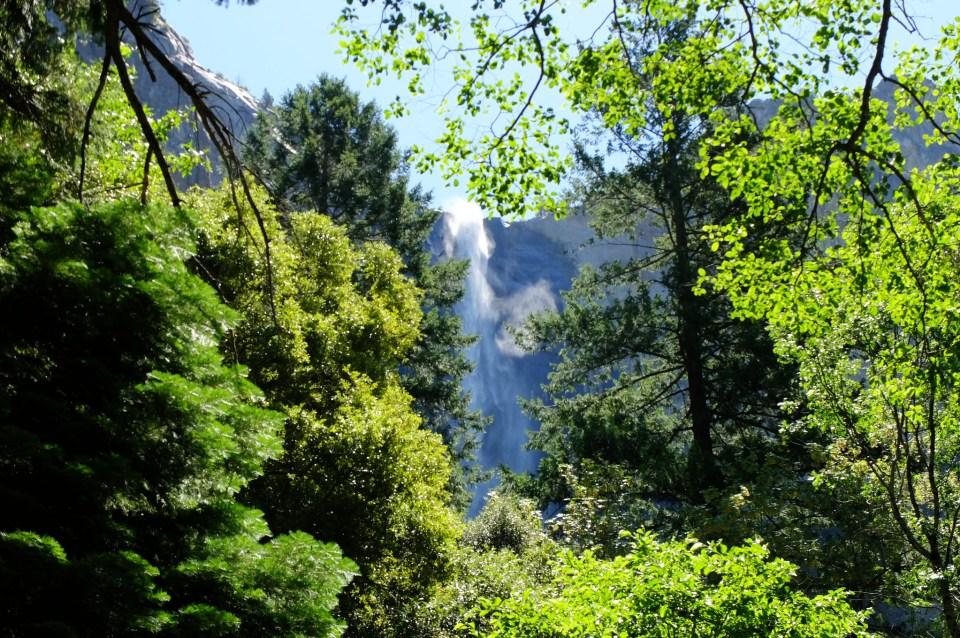 Yosemite National Park 16